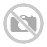 Сотовый телефон GINZZU S5040 Black